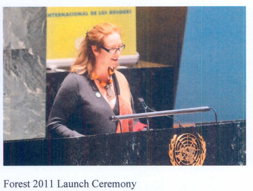 Lisa Samford speaks at the United Nations