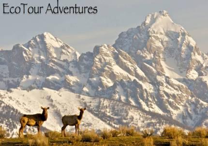 Photo courtesy of Ecotour Adventures Facebook.