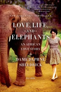 lovelifeandelephants